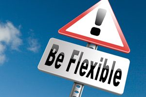 Be Flexible Within Structures - TaskQue Blog
