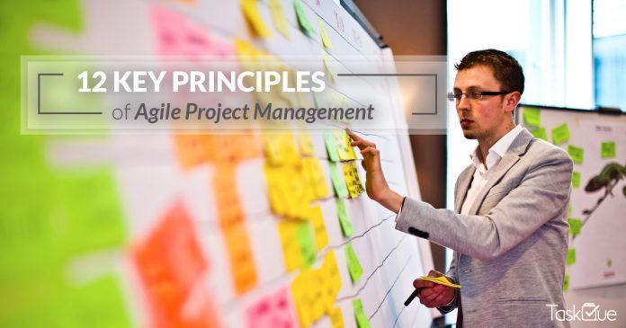 agile project management principles - TaskQue Blog