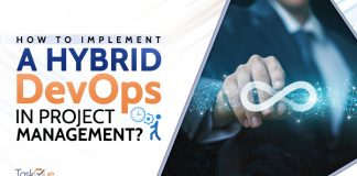 Hybrid DevOps In Project Management?